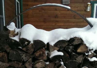 Firewood-Winter1